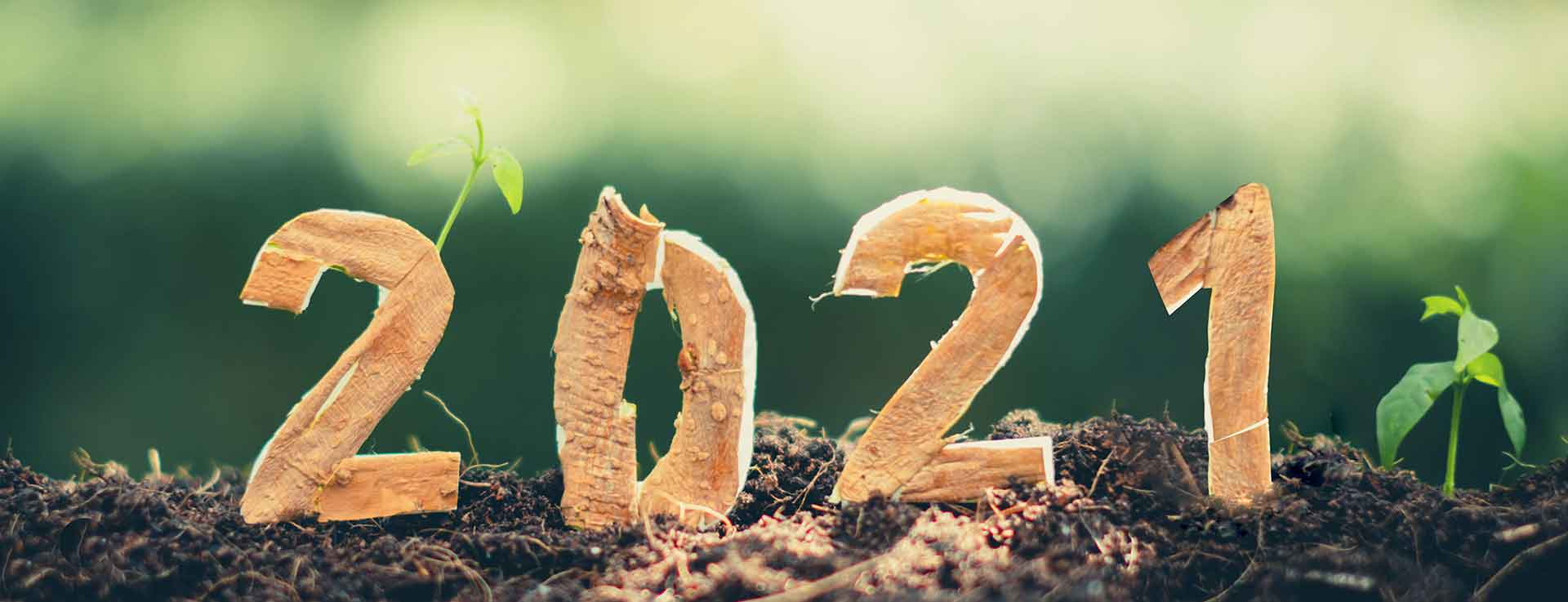 Umweltaktionen 2021