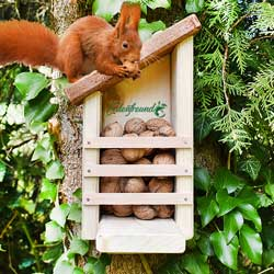 Eichhörnchen Futterkasten Umweltshop