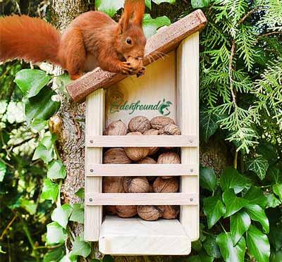 Futterhäuser Eichhörnchen