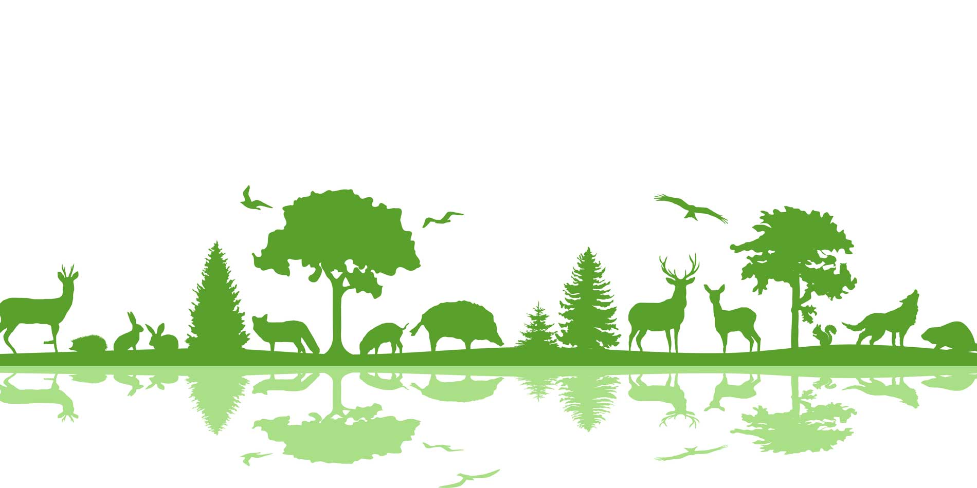 Futterhäuser für unsere Wildtiere