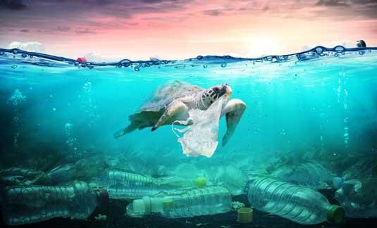 Umweltmission mehr Umweltbewusstsein