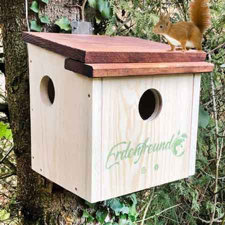 Nisthäuser für Eichhörnchen