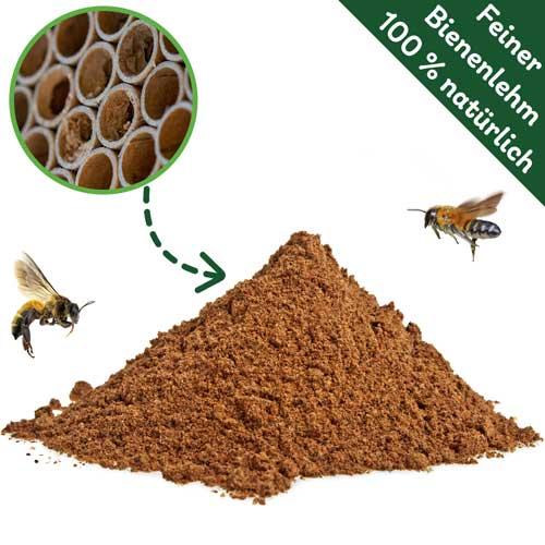 Bienenlehm