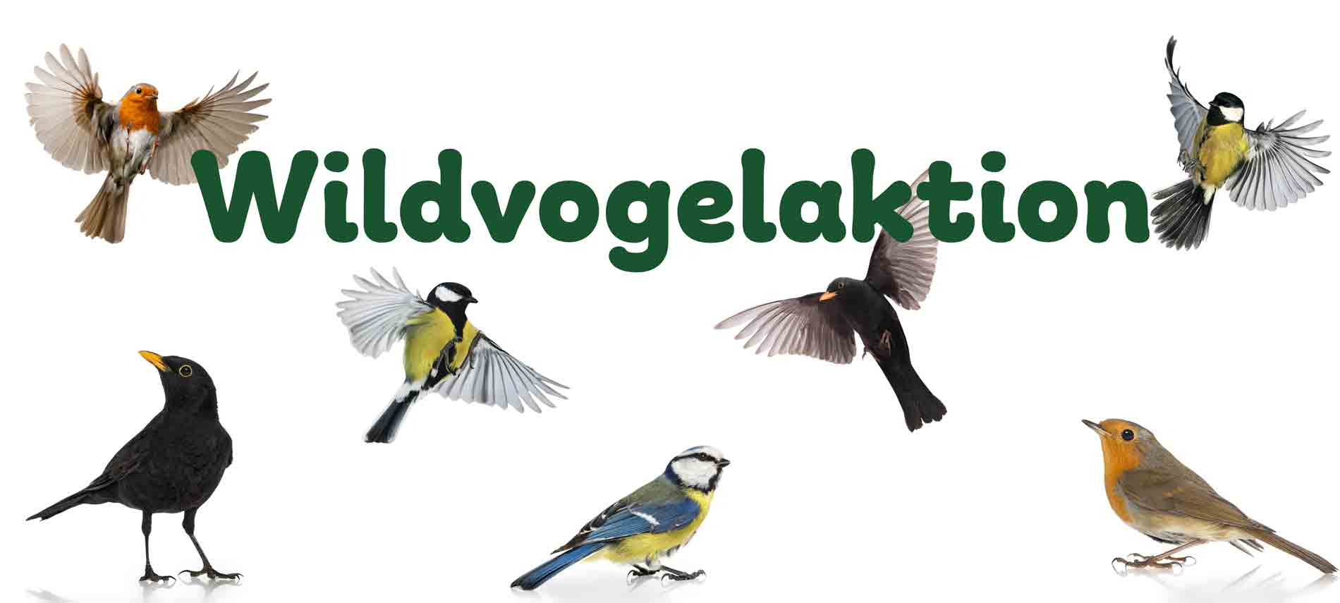 Erdenfreund Singvögelaktion