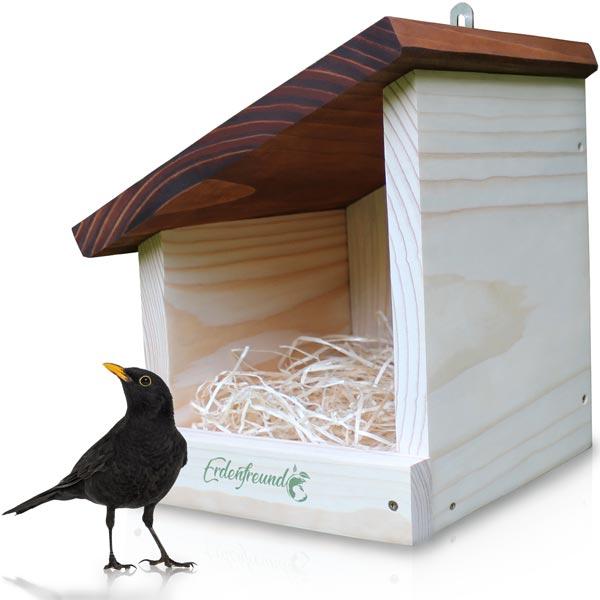 Vogelhaus aufhängen für Amseln