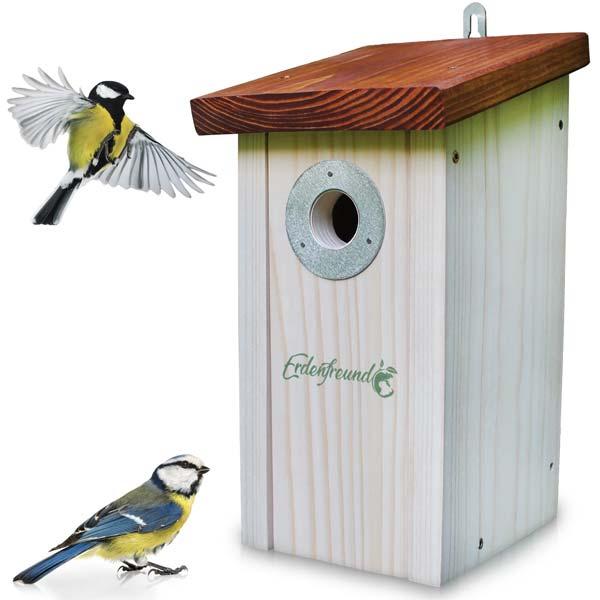 Vogelhaus aufhängen für Meisen