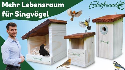 Vogelhaus aufhängen